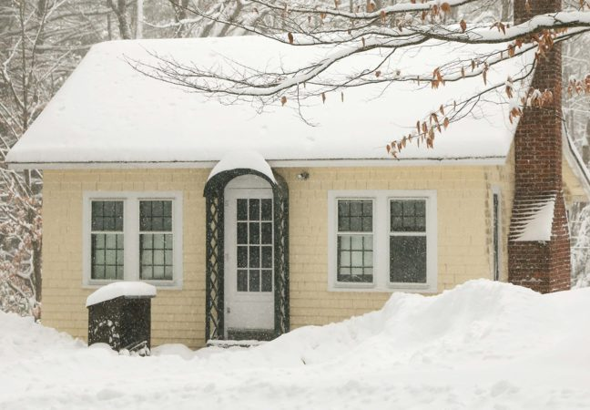 Snow_Mansfield-MACD-17-500_902328180029